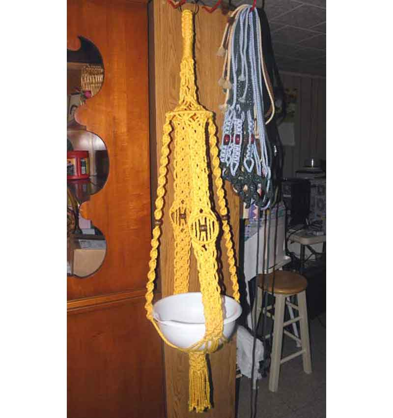 Sunshine Yellow Spice Hanger